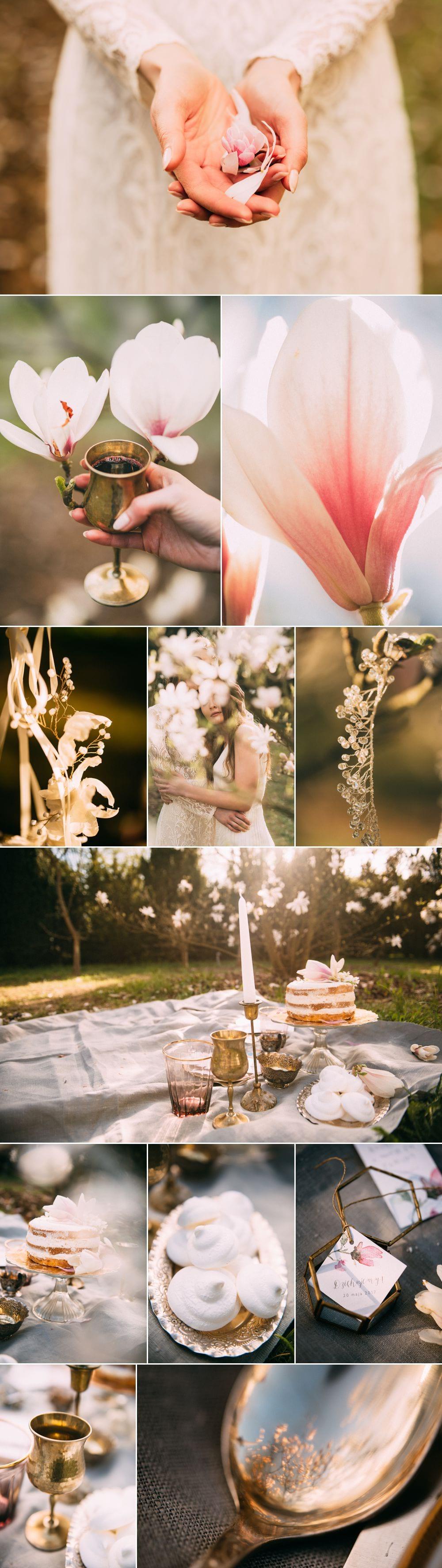 Sen o Magnolii Marifoto fotografia